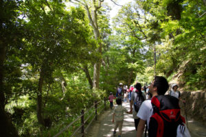 takao山2